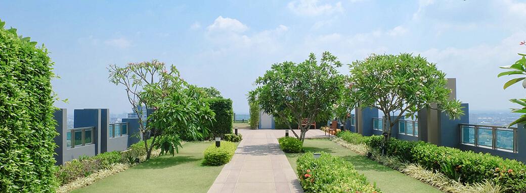 telhados-verdes-em-consultorios
